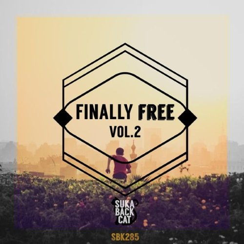 VA - Finally Free, Vol. 2